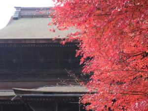 2011togakushi07.jpg